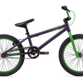 GFR-FW-Purple