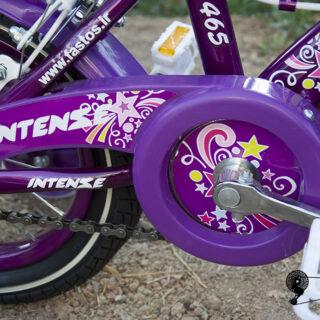 دوچرخه بچه گانه اینتنس مدل استور 12 سایز 12 Intense Kids Bicycle Stor12 12