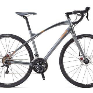 دوچرخه جاده جاینت مدل انای رود Giant Anyroad 2 2014