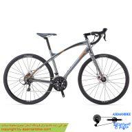 دوچرخه جاده جاینت مدل انی رود Giant Anyroad 2 2014