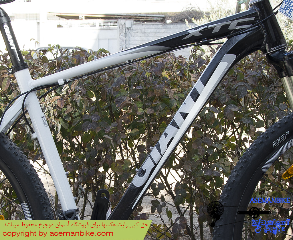 Giant XtC 29 er 1 2013 frame