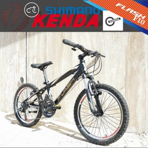 دوچرخه کوهستان فلش مدل اف 10 سایز 20 Flash Mountain Bike F10 20