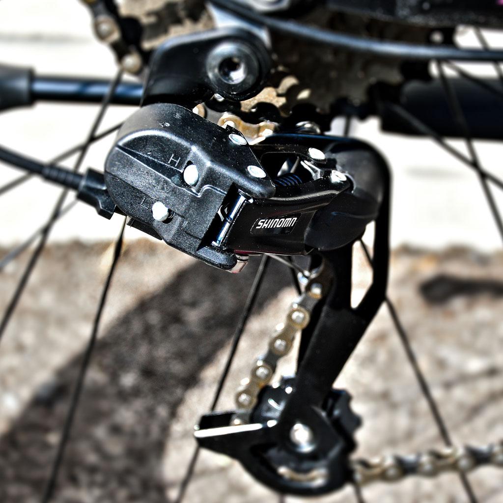 دوچرخه کوهستان بانوان اینتنس مدل اکتیو تو دی 2017 Intense Mountain Bike Lady Active 2D 2017