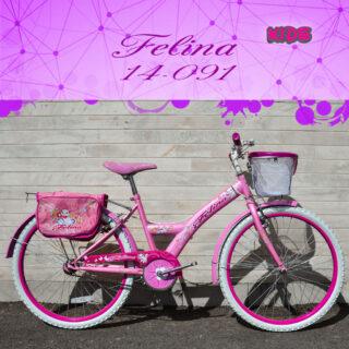 دوچرخه کویر مدل فلینا سایز 24 Kavir Bicycle Felina 24