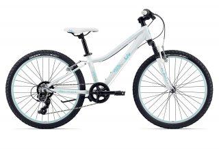 دوچرخه هيبريدي جاينت مدل Enchant 2 24 سايز 24 Giant Enchant 2 24 Hybrid Bicycle Size 24