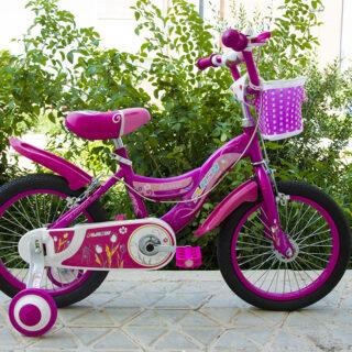 دوچرخه بچه گانه فلش مدل کلاسیک سایز 16 Flash Kids Bicycle Classic 16