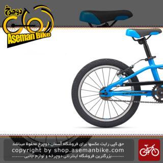 دوچرخه بچه گانه جاینت مدل ای آر ایکس اف دبلیو سایز 16 2020 Giant Kids Bicycle ARX 16 F/W 2020