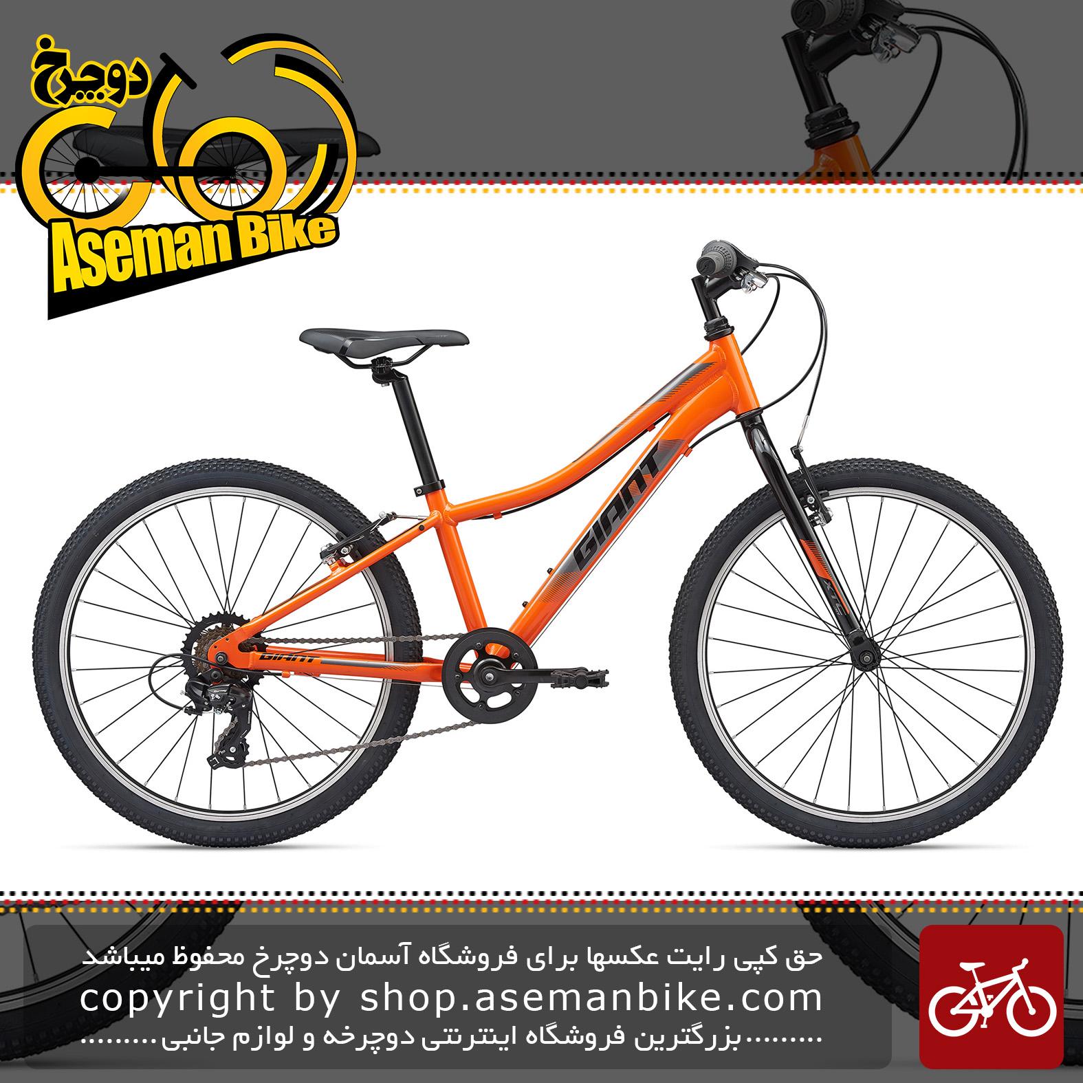 دوچرخه کوهستان جاینت مدل ایکس تی سی جی آر 24 اینچ لیت 2020 Giant Mountain Bicycle XTC Jr 24 Lite 2020