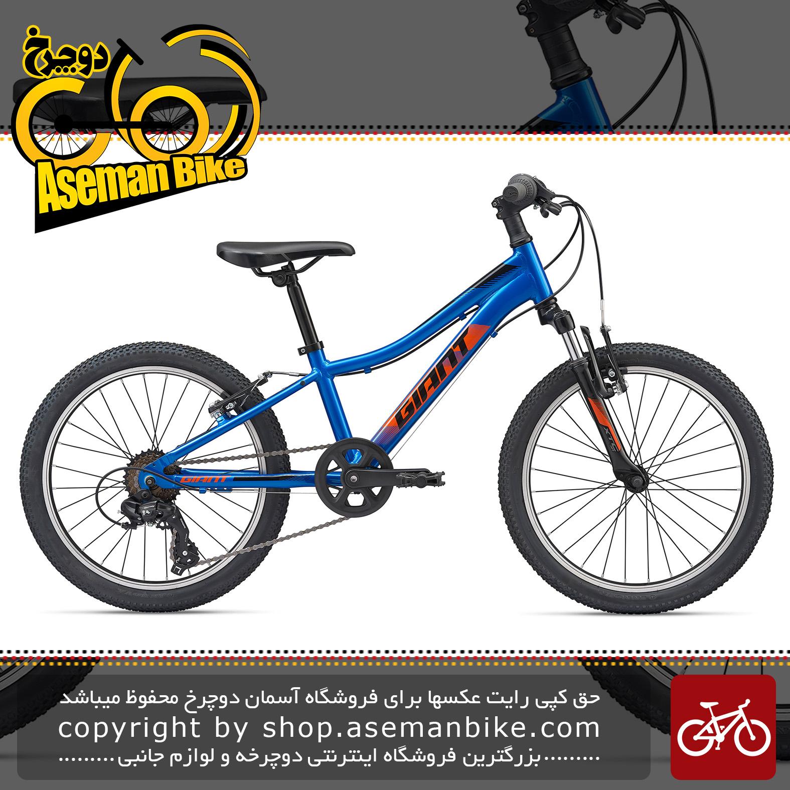 دوچرخه کوهستان جاینت مدل ایکس تی سی جی آر 20 اینچ 2020 Giant Mountain Bicycle XtC Jr 20 2020