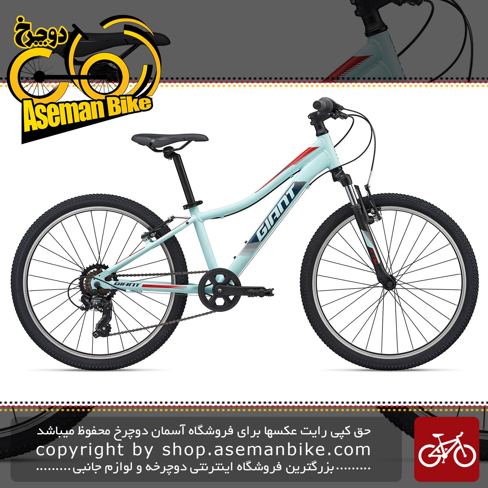 دوچرخه کوهستان جاینت مدل ایکس تی سی جی آر 24 اینچ 2020 Giant Mountain Bicycle XTC Jr 24 2020