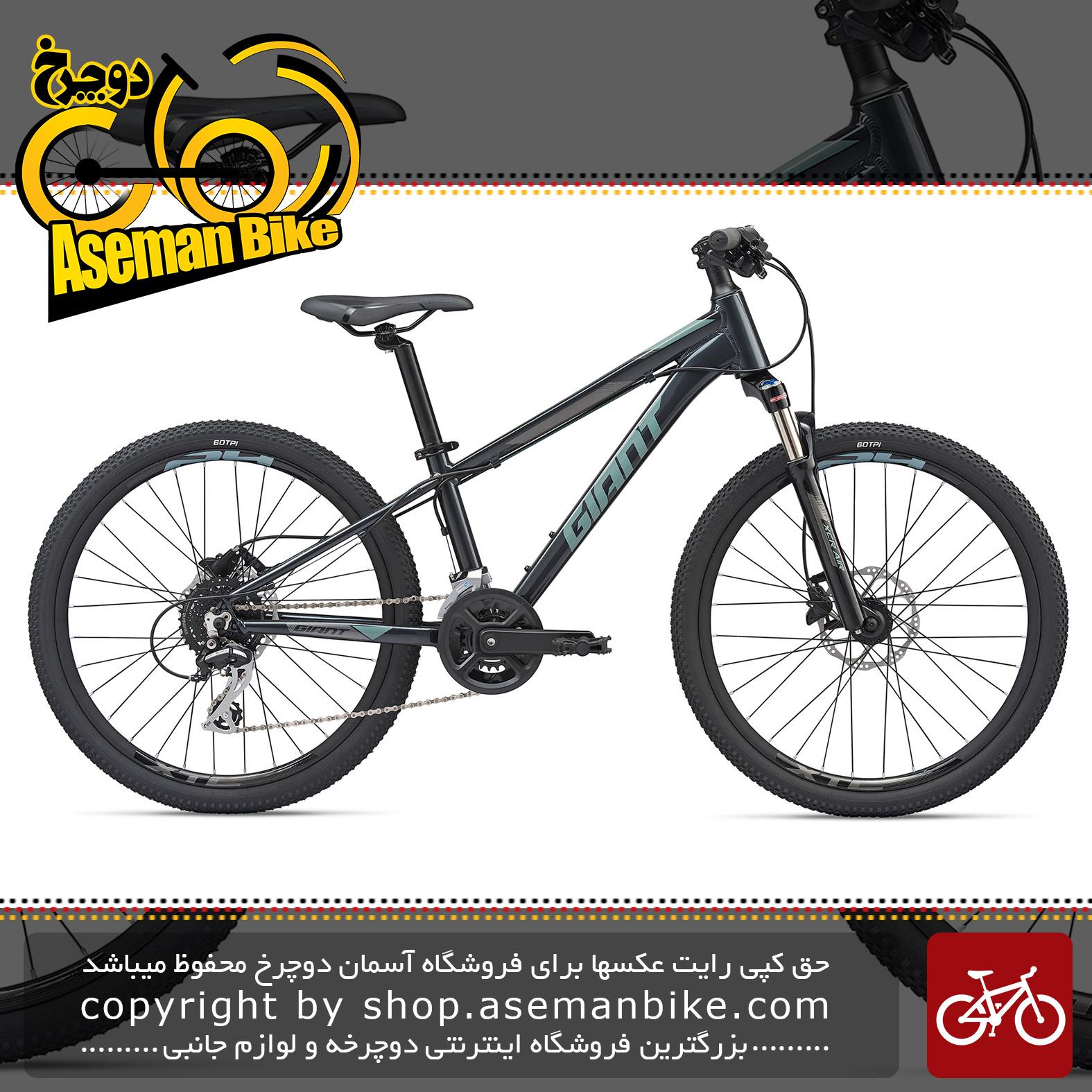 دوچرخه کوهستان جاینت مدل ایکس تی سی اس ال جی آر 24 اینچ 2020 Giant Mountain Bicycle XtC SL Jr 24 2020